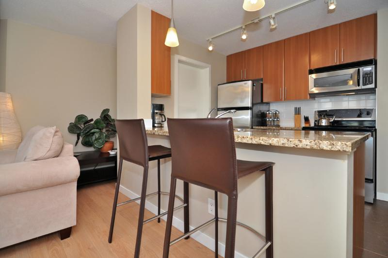 Downtown Vancouver Modern 1 Bedroom Condo Walk to Attractions and Amenities - Image 1 - Vancouver - rentals