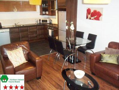 NITB 2 Bedroom Aparment - Winter Garden Apartment, Belfast City Centre - Belfast - rentals