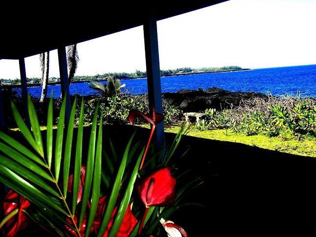 Oceanfront Alohahouse - Live on the Edge of the Blue Pacific - Oceanfront 3 Bedroom Alohahouse on the Puna Coast! - Keaau - rentals