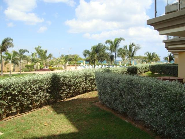 Private garden space enclosed by green hedges... - Garden Delight Studio condo - E125-1 - Eagle Beach - rentals