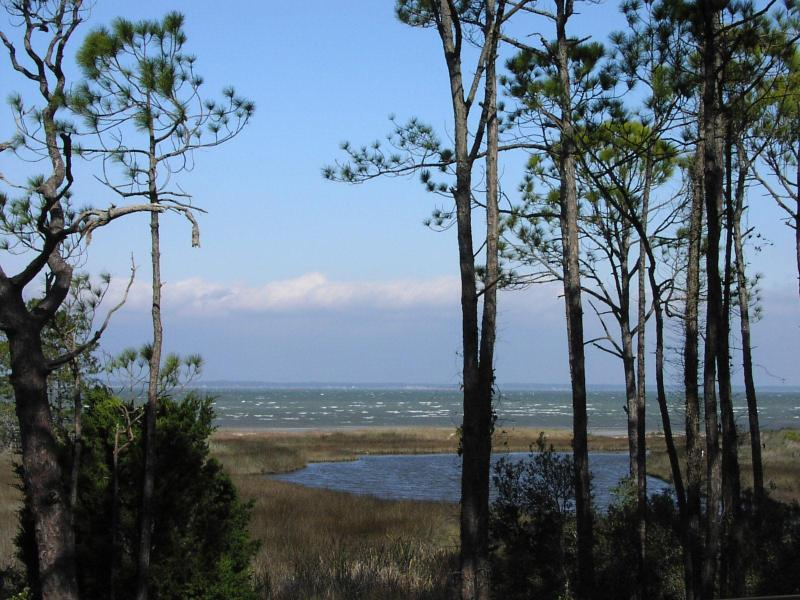 Panoramic View from Deck and Interior of Home - Panoramic Bayfront Home 1.5 Blocks to Gulf Beach - Saint George Island - rentals