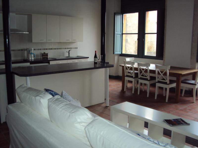 Great Room - 3 bedroom apartment in historic Agde, South France - Agde - rentals