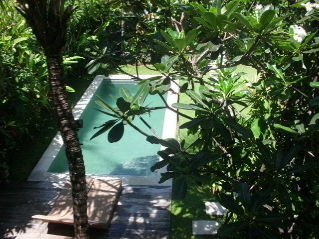 looking down on the pool from 2nd bedrm - An Oasis close to the Beach - Kerobokan - rentals