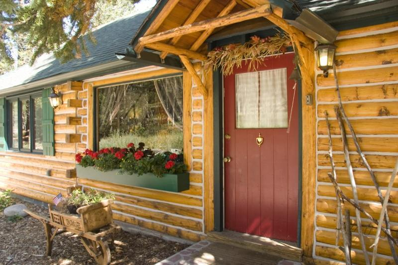 A storybook cabin - Enchanting Mountain Cabin Wooded Property w/ WiFi - Estes Park - rentals