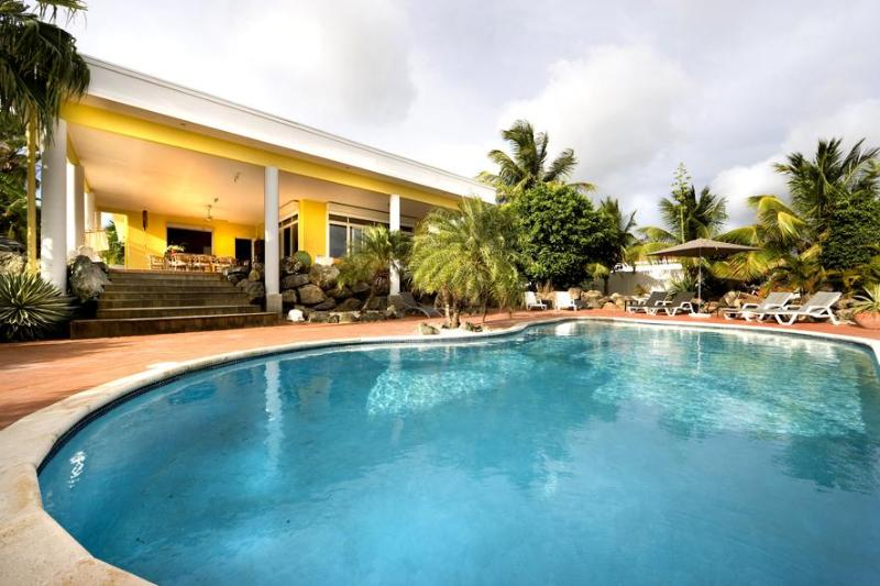 Amazing private pool in back yard - Beautiful 5 Star Private Villa with Huge Pool - Willemstad - rentals