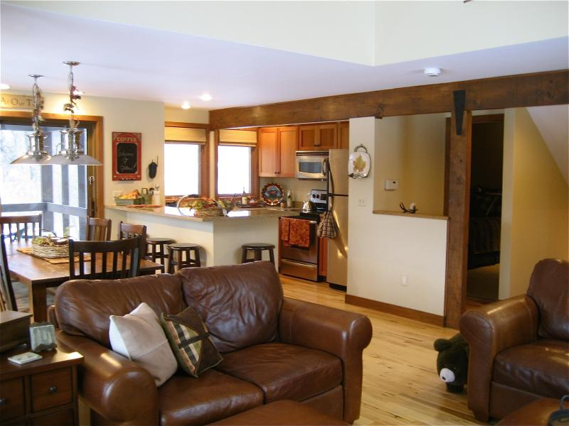 Main floor great room - Fall Rates /Stay 7 nights for the price of 5 /Wifi - Galena - rentals
