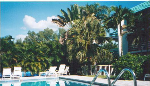 Heated Pool at Saniel Siesta - Breathtaking 2 BR/2 Ba, 77 Steps to Beach Unit 304 - Sanibel Island - rentals