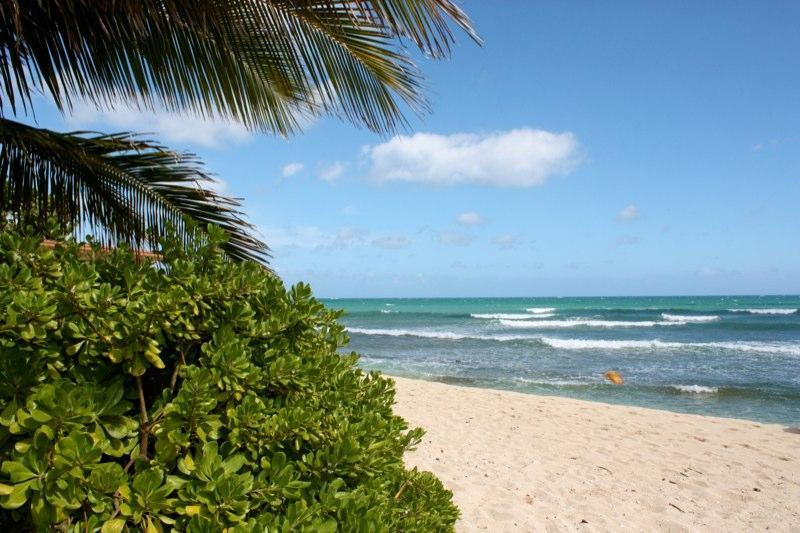 Wonderful beach out front...views of Honolulu city lights - Luxury on the BEACH-. weddings,reunions - Ewa Beach - rentals