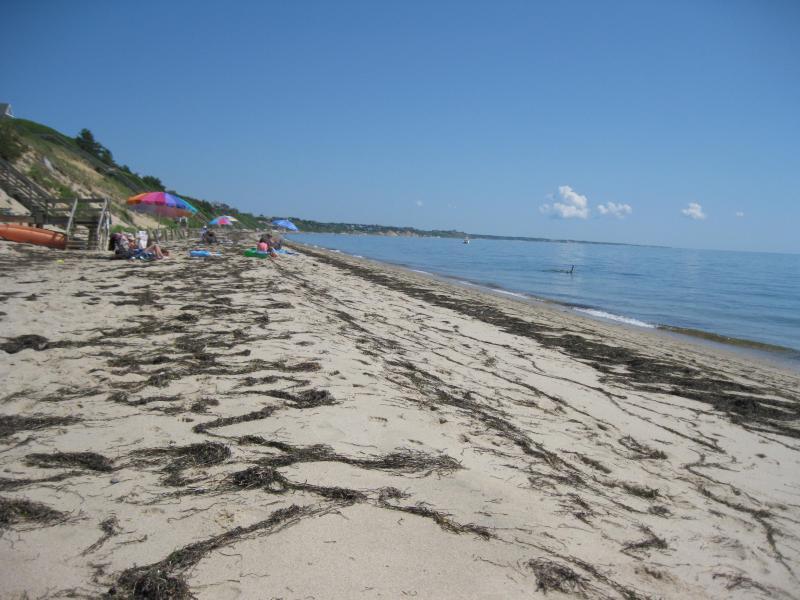 Our Beach - semi private 3 minute walk toward Wellfleet - Cape Cod Studio (No. Truro) - North Truro - rentals