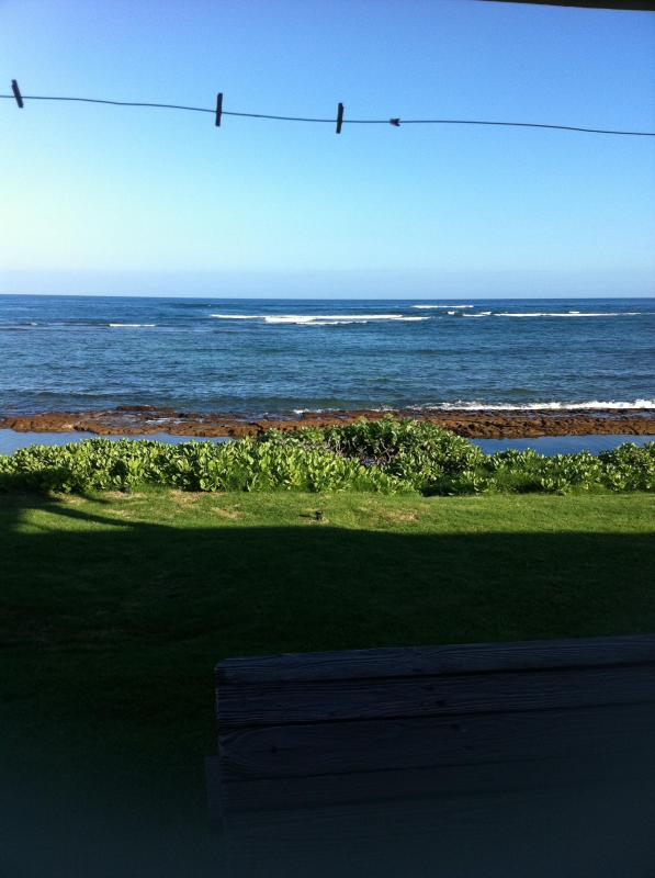 Outside views, porch with clothes line for hanging wet items - Bath Tub Beach-luxury studio on the sand,  wifi - Laie - rentals