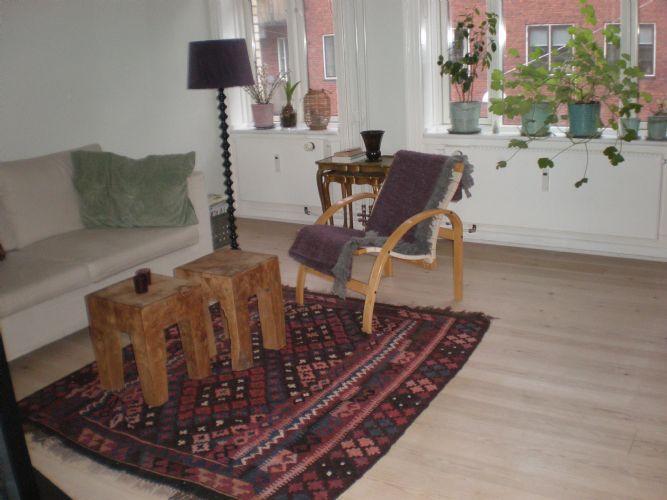 Sankt Annae Gade Apartment - Charming Copenhagen apartment near Christianshavn Metro - Copenhagen - rentals