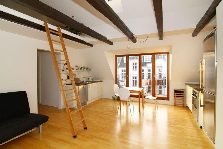 Brammingegade Apartment - Wonderful penthouse apartment in Copenhagen - Copenhagen - rentals