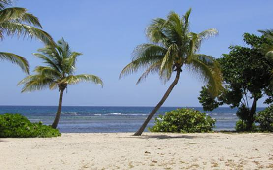 Caribbean Retreat - Image 1 - Christiansted - rentals