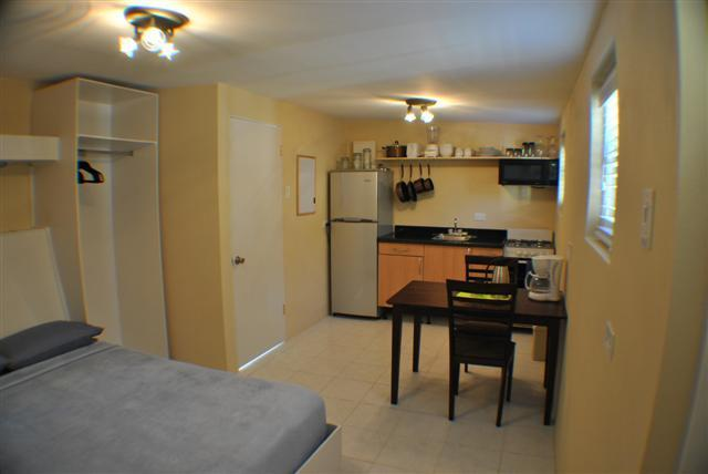 Overview - Studio Apartment stone throw from everything Aruba - Oranjestad - rentals