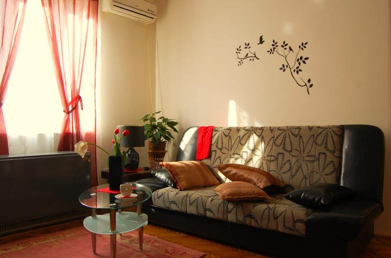 1 BR Vracar Apartment in The Center of Belgrade - Image 1 - Belgrade - rentals