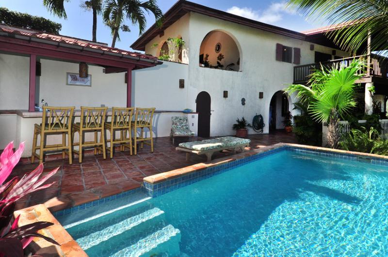 Pool and villa - St. John Villa Rental with pool, Coral Bay - Coral Bay - rentals