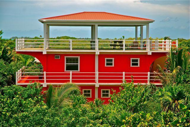 Casa Roja outside in the garden - Casa Roja a modern tropical house on Caye Caulker - Caye Caulker - rentals
