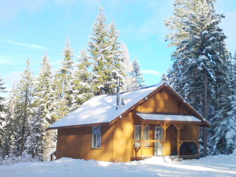 1 of a Kind Getaway for Special Occasions & Fun - Cabin Retreat in the Teanaway Forest - Cle Elum - Cle Elum - rentals