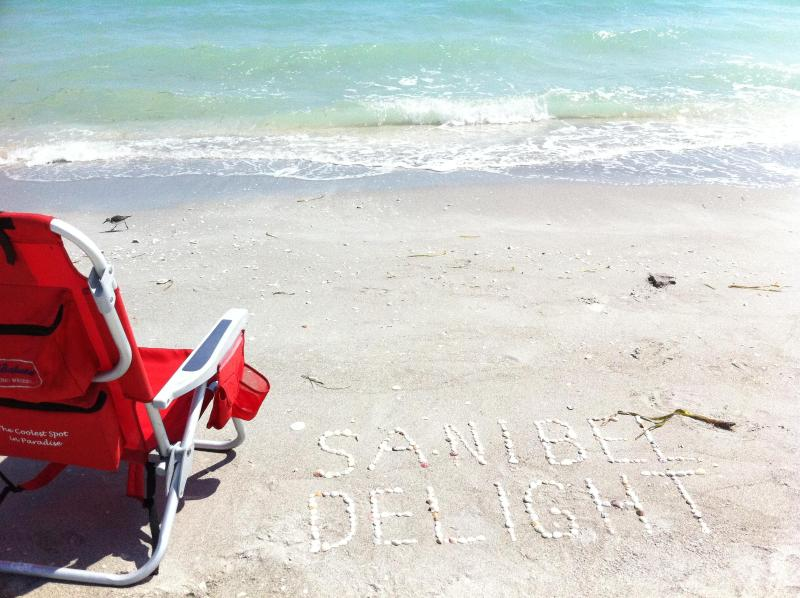 Pristine shell strewn beaches - Sundial Resort B402 - Amazing Gulf View - Sanibel Island - rentals