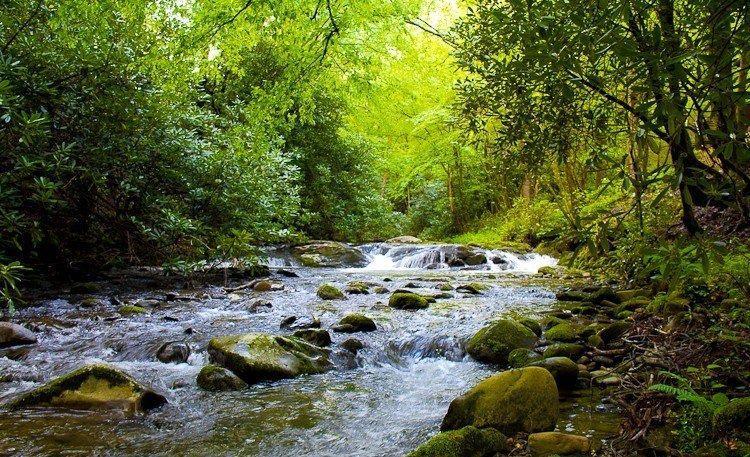 Laurelwood Falls Cabin-Creekside View - Laurelwood Falls Cabin-Romantic Waterfall Cabin - Gatlinburg - rentals