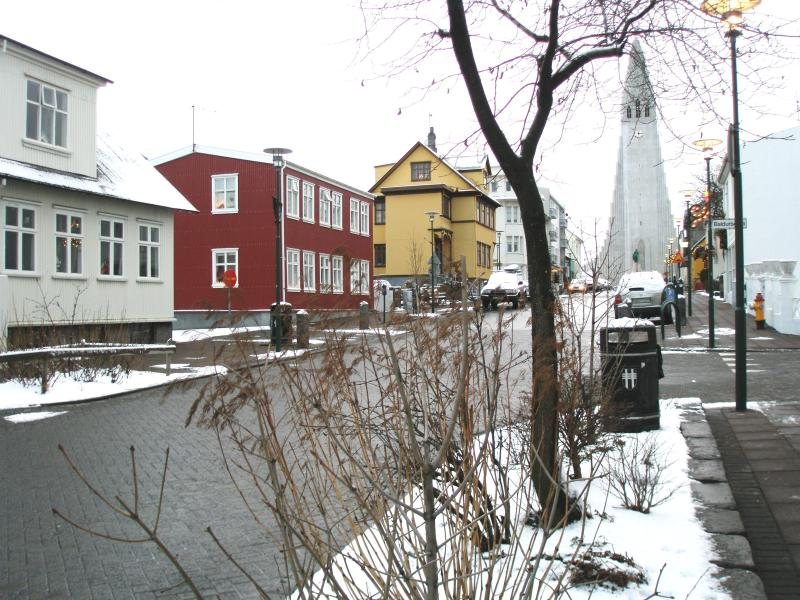 From Hallgrims Cathedral - The Red House Holiday Flat Lower Includes WIFI! - Reykjavik - rentals