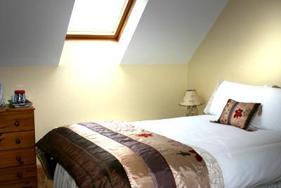 beautiful b&b near cliffs of moher and the burren - Image 1 - County Clare - rentals