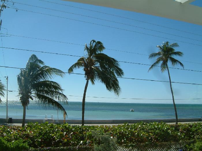 Patio View - Oceanfront 2 Bedroom 2 Bath Condo Key West Florida - Key West - rentals