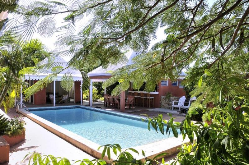 swimmingpool as the center of the guesthouse - Exclusive and private Caribbean Guesthouse - Terres Basses - rentals