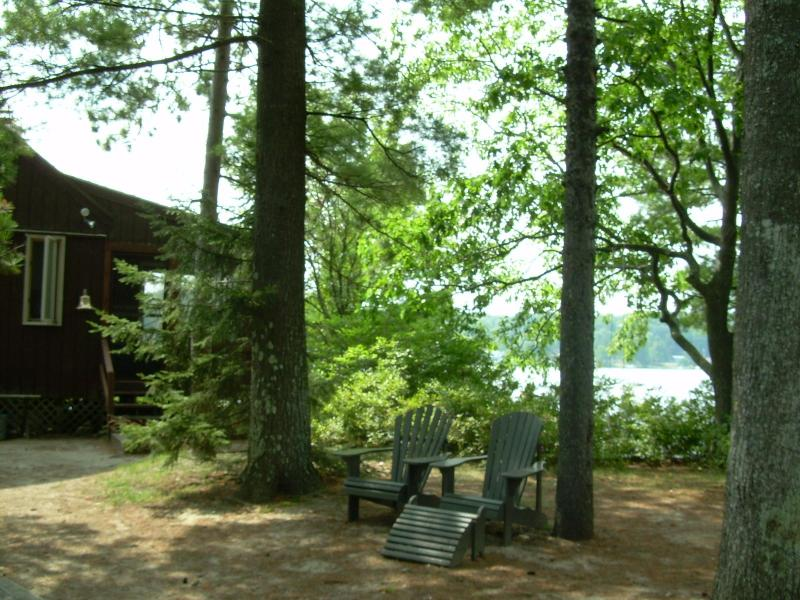 Relaxing under the pines, outside the house - Private Island - Crystal-Clear Sandy-Bottomed Lake - Sanbornville - rentals