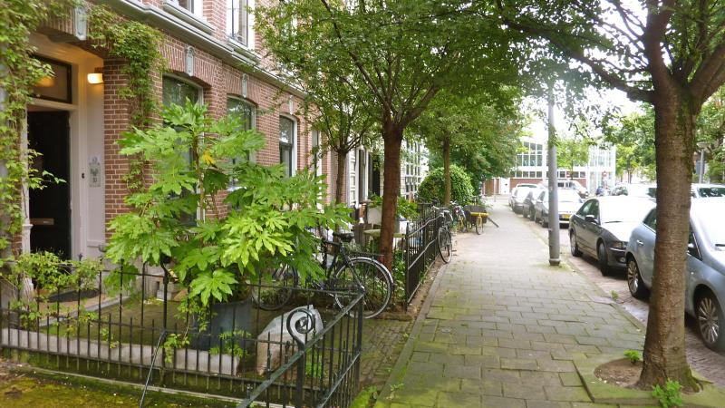 Secure, quiet, green, residential area - BB10 Amsterdam  DeLuxe Apartment in 1881 Townhouse - Amsterdam - rentals