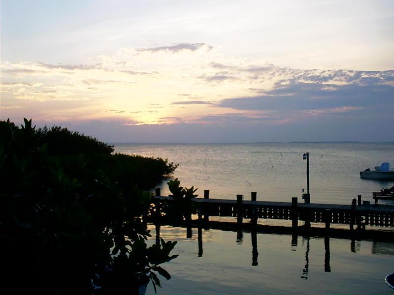Sunset Views from Dock - Islamorada Tropical Escape! Clean, Affordable & Li - Islamorada - rentals