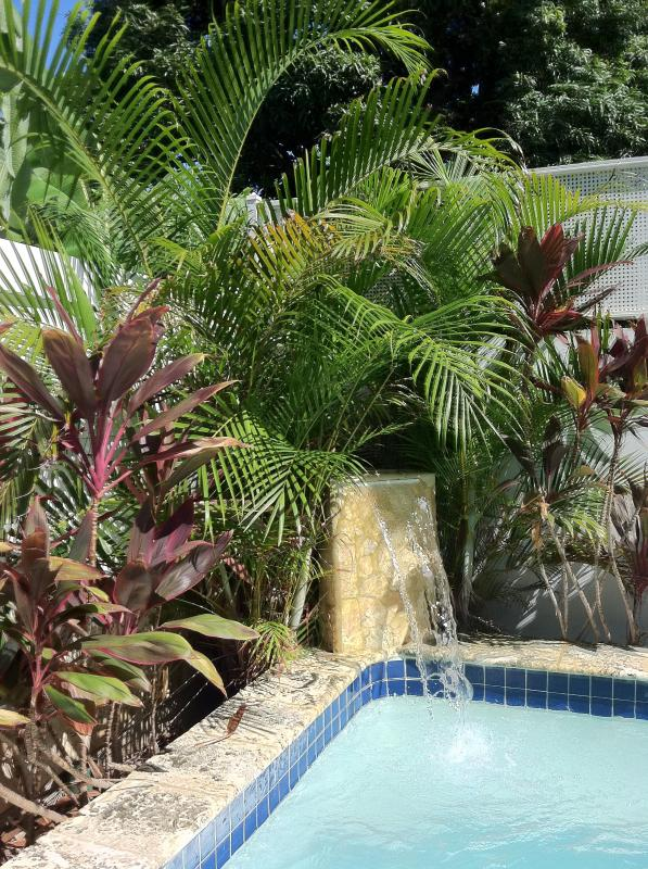Refresh in the private Dipping Pool - Suite 8, Affordable Luxury, Beachside, Rincon, PR - Rincon - rentals