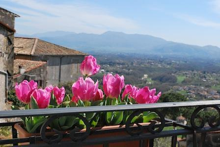 Balcony view toward the east - Altavista - Palestrina - rentals