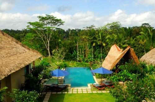 The view from Villa  Sebali - Villa Sebali serene,luxurious 4 bedrooms villa - Ubud - rentals