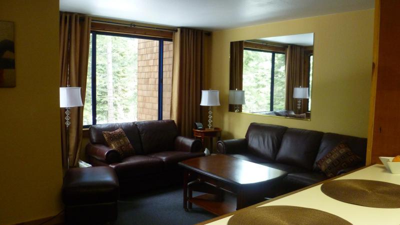 Living Room has Sleeper Sofa and Coffe/ Foosball Table - Northstar Ski Trails Area 1BR Condo - Truckee - rentals