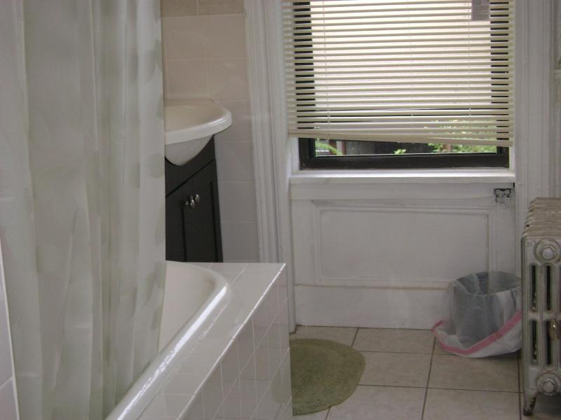 two bedroom apartment overlooking a garden - Image 1 - New York City - rentals