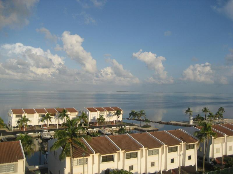 Arial View of the property - Spring Special Discount Rate - Islamorada - rentals