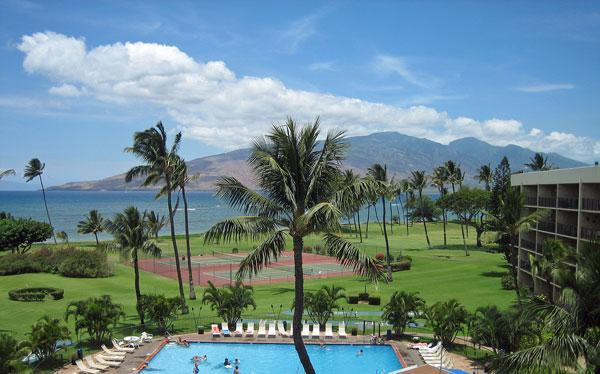 Pool and grounds - On the beach in Kihei at Maui Sunset - Kihei - rentals