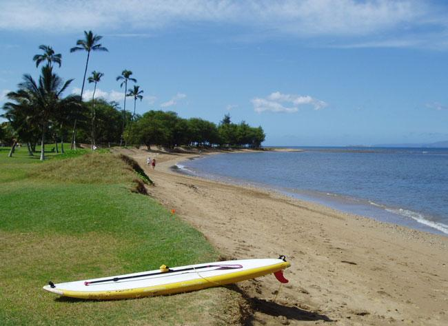 Paddle board at the Beach - On the beach in Kihei at Maui Sunset - Kihei - rentals