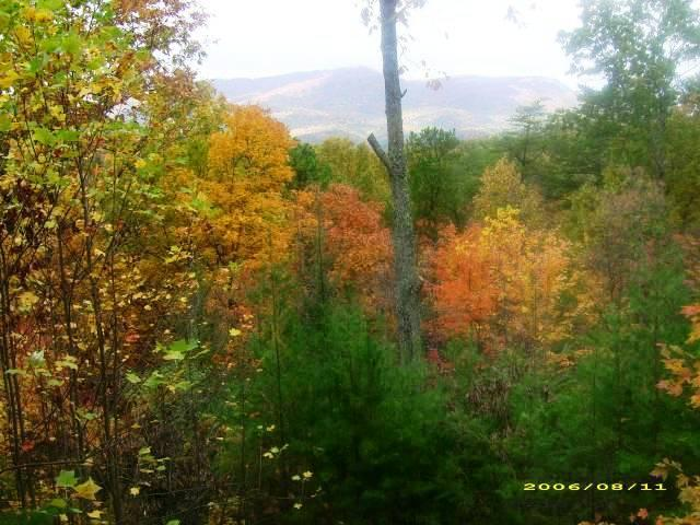 Fall view from hot tub - Serenity in the Mountains - Pigeon Forge - rentals