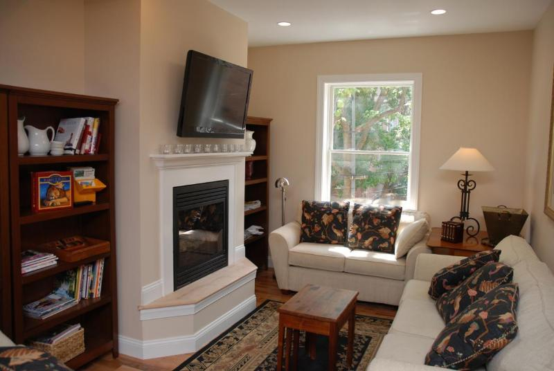 Living Room with Lots of Natural Light - Steps to Metro Dupont Circle * DC's Best & Safest - Washington DC - rentals