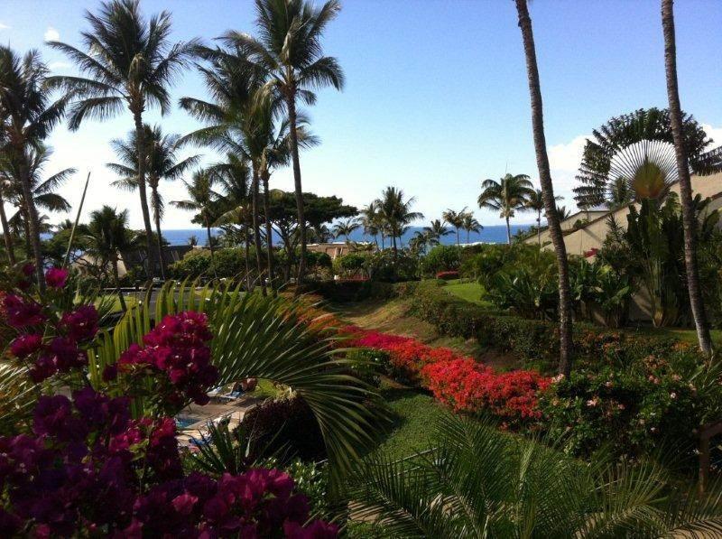 Maui Kamaole #c-209 - Image 1 - Kihei - rentals