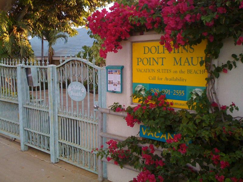 Welcome to Dolphins Point Maui - Beachfront - The Ginger Suite, Dolphins Point Maui - Kihei - rentals
