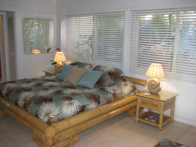 The Ginger Suite - Beachfront - The Ginger Suite, Dolphins Point Maui - Kihei - rentals