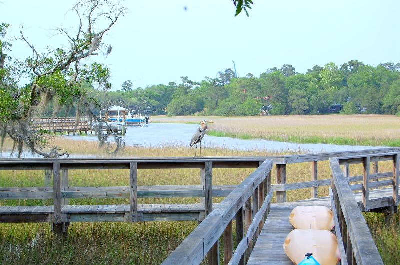 KAYAKS for your use on the Dock. Stand Up Paddleboards too! Fish and crab and enjoy the LowCountry. - Big Chill | Waterfront Vacation Rental Charleston - Charleston - rentals