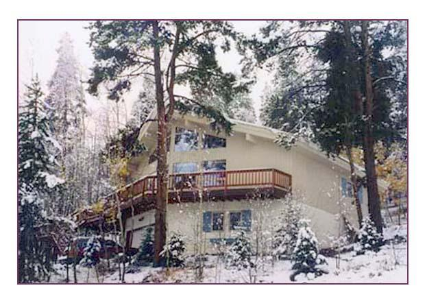 HAUS BERGWALD - Haus Bergwald  nestled on the side of Peak 7 - Breckenridge - rentals