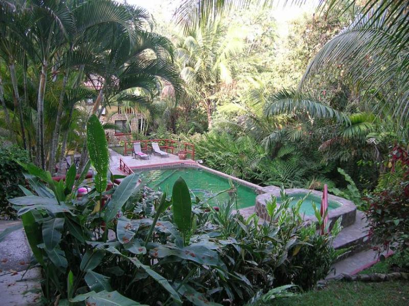 Chaman Swimming Pool - Casa Tango Costa Rica Tropical Villa - Manuel Antonio National Park - rentals