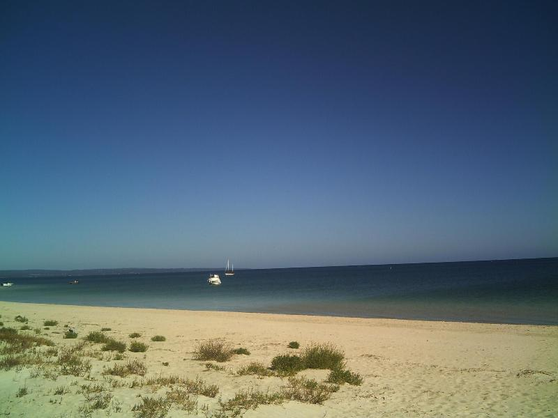 The beach in front of the home - Busselton Beachfront - Busselton - rentals
