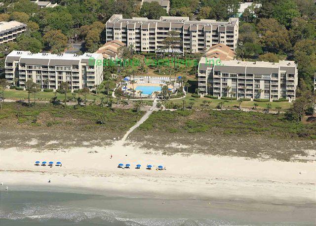 Shorewood 130 - Oceanside - Image 1 - Hilton Head - rentals