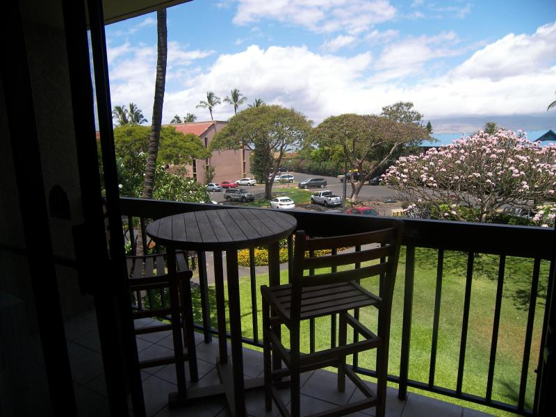 Lanai - 200 Yards from one of the best beaches on Maui!!! - Kihei - rentals